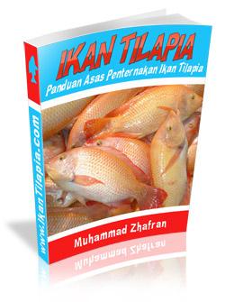 Kenapa KM Tak Makan Ikan Tilapia AKA Ikan Talapia?